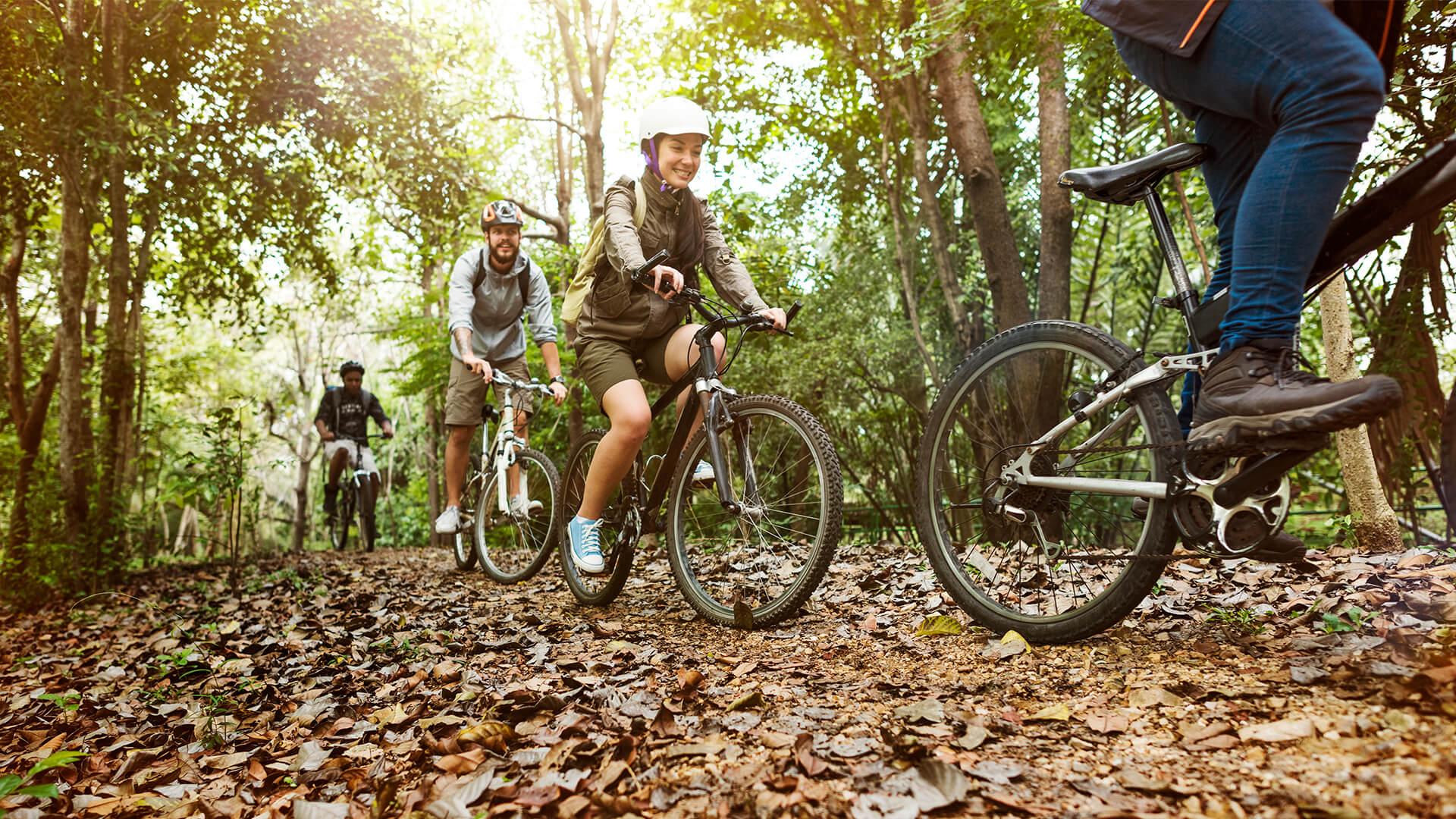 Inchirieri de biciclete Piatra-Neamt